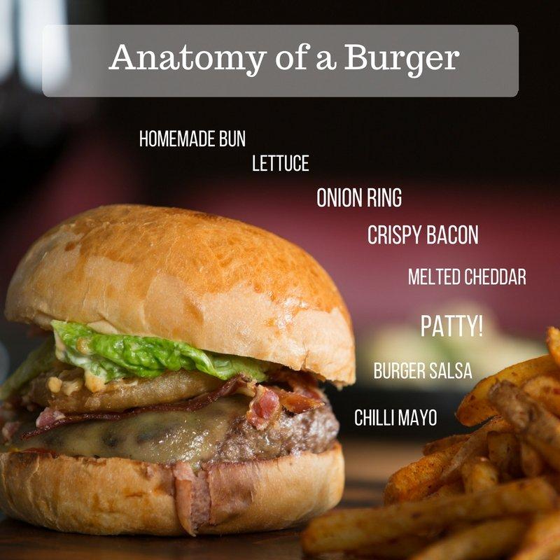anatomy-burger